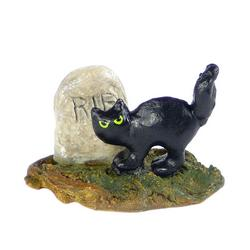 Black cat in front of a tombstone