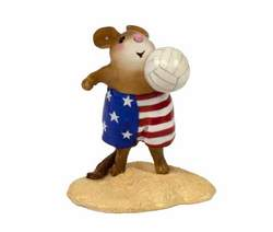 Boy mouse plays beach volleyball in patriotic beach shorts